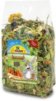 JR Farm Zakrslý králík Feast 2,5 kg