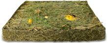 JR Farm Sušená louka pampelišková 750 g